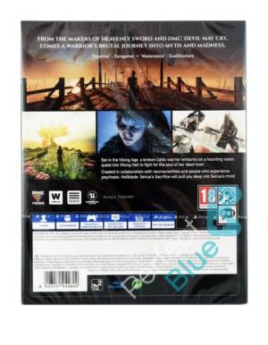 Gra PS4 Hellblade Senua's Sacrifice