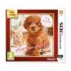 Gra Nintendo 3DS / 2DS Nintendogs + Cats: Toy Poodle & New Friends